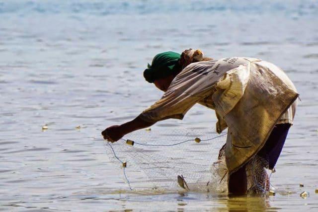 Scène de pêche traditionnelle