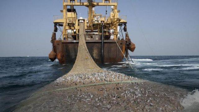 La pêche industrielle à Madagascar