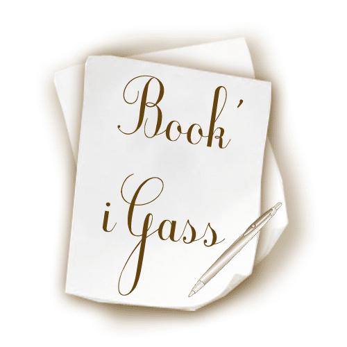 Logo Book'iGass - book'igass
