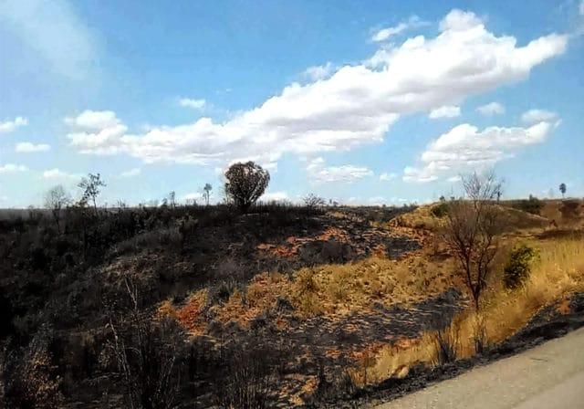 Les dégâts du feu de brousse