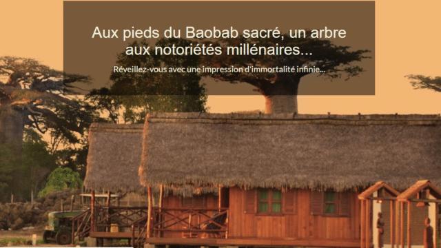 Relais Kirindy Morondava, près du Kirindy et du Baobab sucré à Morondava