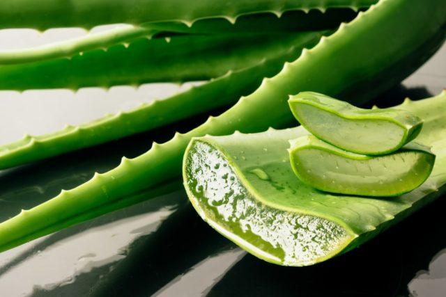 Le gel d'aloe vera est un activateur de boucles très efficace