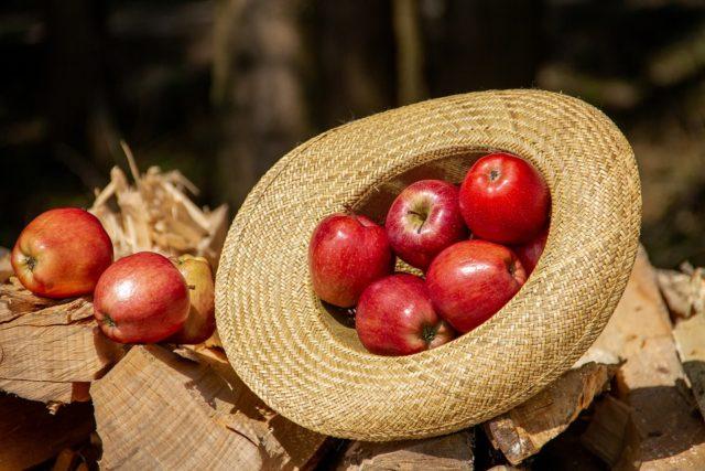 À Madagascar, la saison des pommes, c'est entre janvier et mars