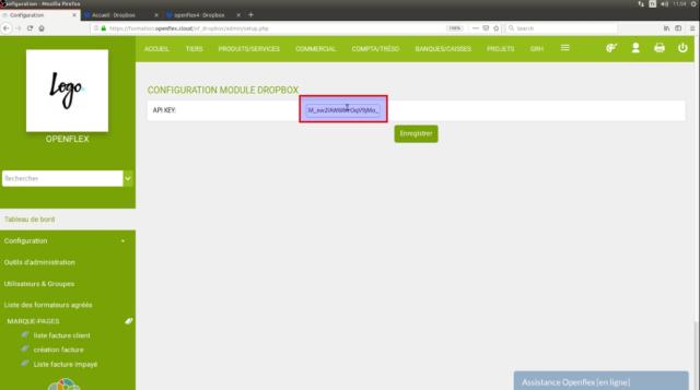 Collez la clé API que vous avez pris dans votre compte Dropbox