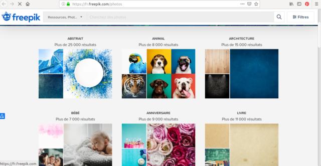 Pour chaque catégorie d'images, Freepik dispose d'un catalogue très complet