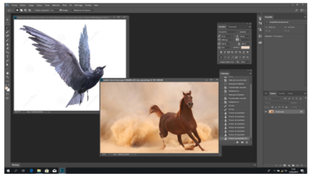 Find images to use for your Photoshop montage