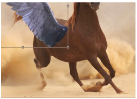 It will be necessary to deform the birth of the wing so that it follows the perspective of the side of the horse