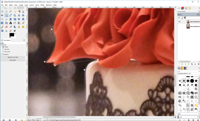 Avec l'outil chemin, marquez grossièrement le contour de l'image