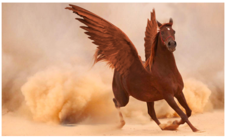 Photoshop Montage: here is the final result, we have a nice winged horse!