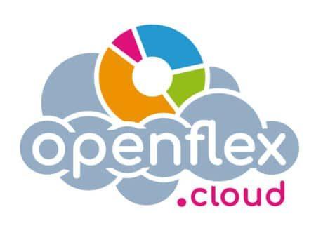 Openflex, software de gestión comercial