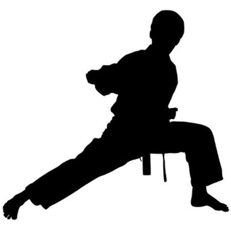 Parlons arts martiaux, lequel est le meilleur selon vous? Pourquoi?