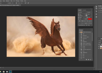Titre : Tuto d'un montage simple sur Photoshop : mettre des ailes à un cheval