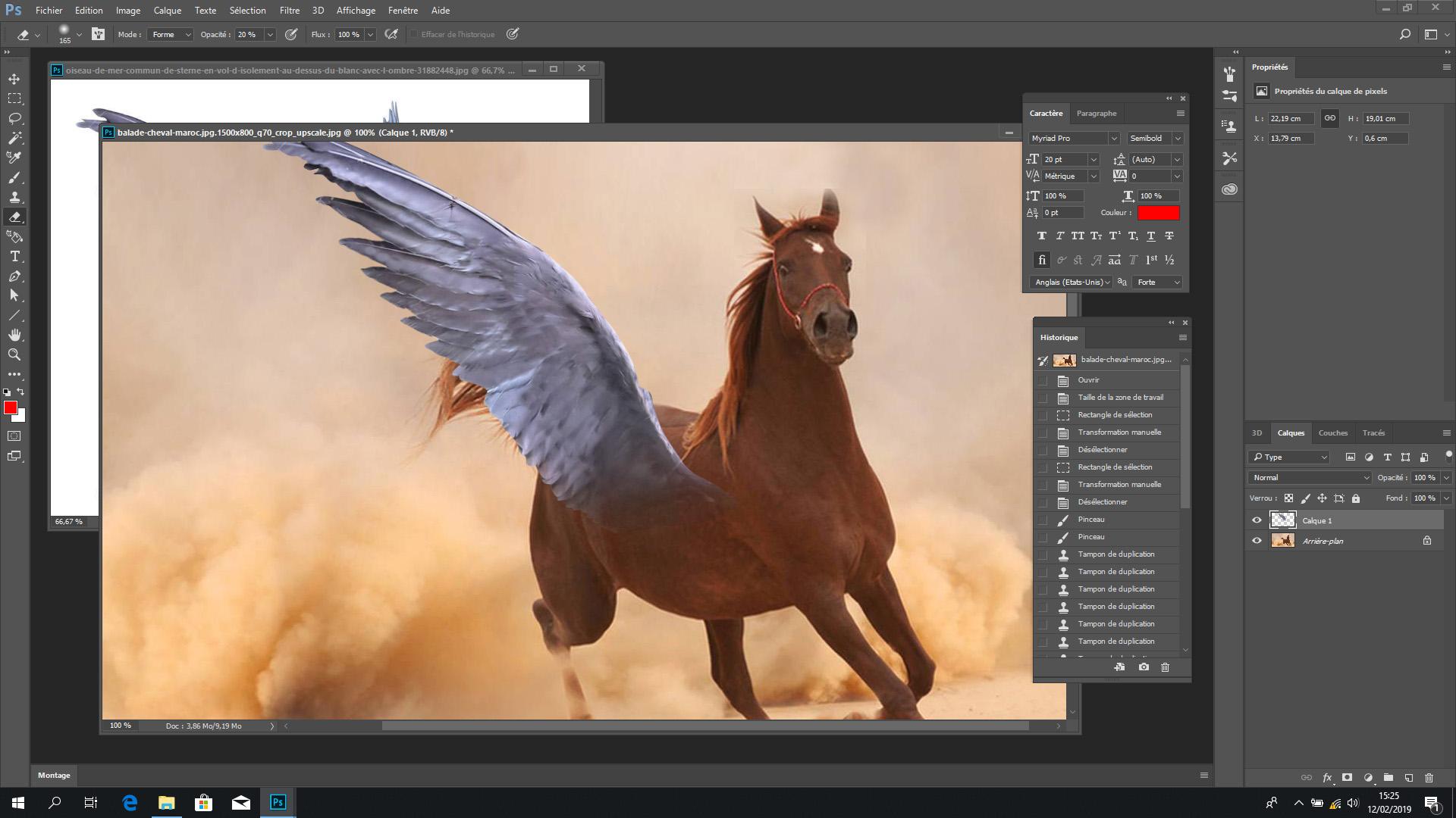 La démarcation n'est plus flagrante entre l'aile et le flanc du cheval. La gomme a fait son petit effet!