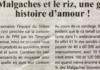 """""""Les malgaches et le riz, une grande histoire d'amour"""" - Titre du journal Jejoo du 21 mars 2019"""