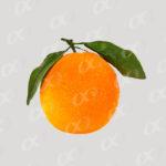 Une orange entière 3
