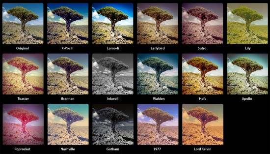 Les filtres Instagram peuvent radicalement transformer vos images