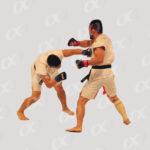 Combat MMA 3