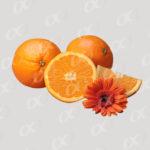 Tas d_orange et une fleur