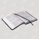 Un livre ouvert 5