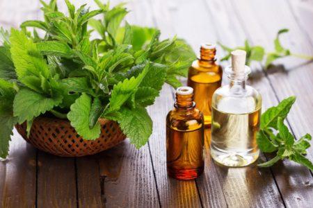 Les huiles essentielles à la menthe, il faut en avoir à portée de main