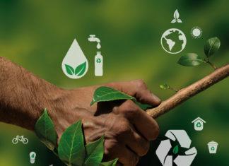 L'écologie à Madagascar : nous allons passer au vert ?