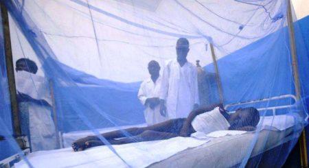 Des campagnes accuentées pour la lutte contre les moustiques et le paludisme sont faites dans les pays du sud de l'Afrique