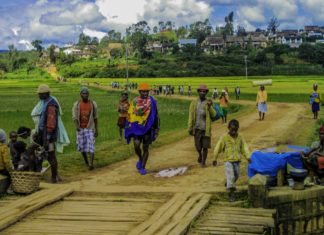 L'origine du peuple malgache, un mystère enfin décelé