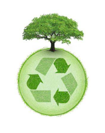 Le changement de comportement envers la nature devient aujourd'hui une obligation pour une planète verte