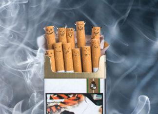 Le tabagisme à Madagascar: fumeur un jour, fumeur toujours ou le «fumer tue» de nos paquets fait son effet?