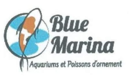 Le logo de «Blue Marina», une société parvenue à bout de tout un lot de complications