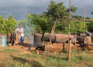 Toaka gasy : fabrication du rhum traditionnel malgache