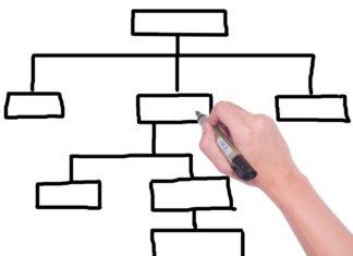 3 types d'organigrammes pour un bon fonctionnement de votre entreprise