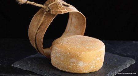Le Bitto Storico fait parti des fromages les plus chers du monde