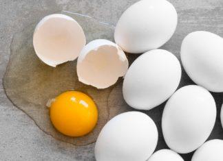Manger des œufs tous les jours : pas si mauvais qu'on le croit