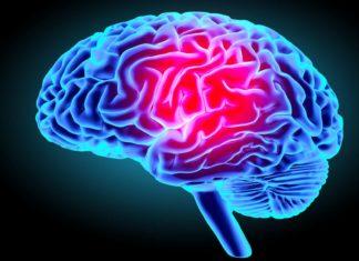 Comment prendre soin du cerveau? Voici les 7 règles d'or à suivre!