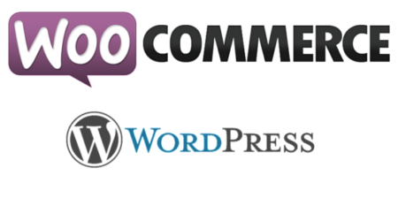 Make money on the Internet with Woocommerce for WordPress