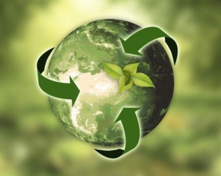 Le recyclage, une des activités que Greener réalise pour préserver l'île