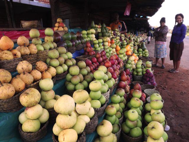 et les fruits d'Antsirabe sont les plus réputés à Madagascar