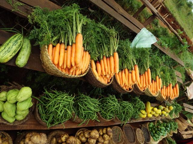 De manière générale, les légumes