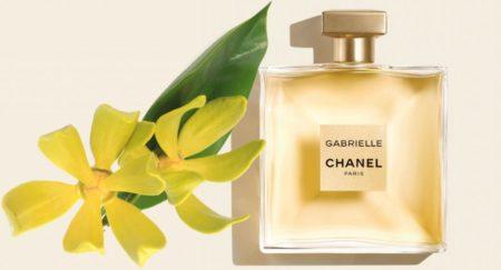L'ylang-ylang de Madagascar produit des essences très sollicitées dans le domaine de la parfumerie, il a notamment servi pour le parfum Gabrielle de Chanel