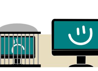 Différence entre un logiciel libre et un logiciel gratuit : à ne pas confondre !