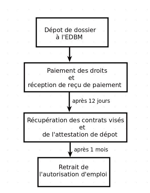 Résumé de la procédure pour une demande d'autorisation d'emploi à Madagascar