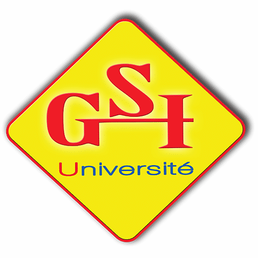 GSI Madagascar, formation supérieure et e-learning