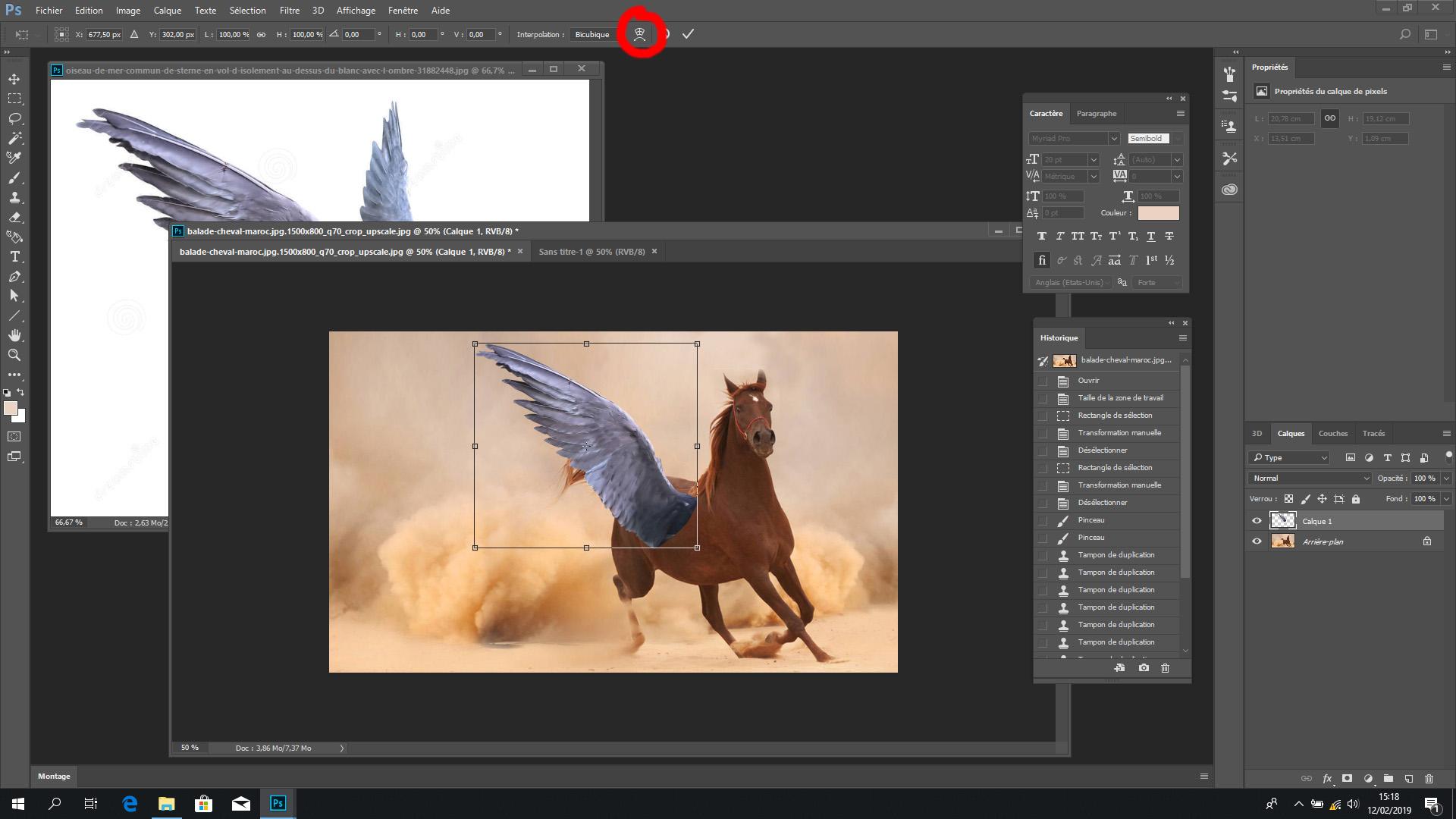 """Nástroj """"bezplatná transformace"""" Photoshopu (zakroužkovaný červeně)"""