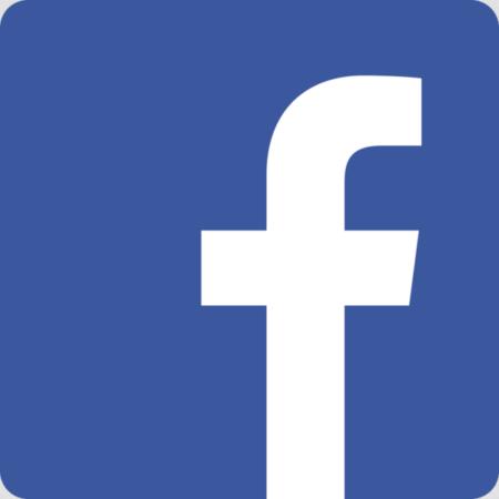 Facebook atrae al 98% de los entusiastas de las redes sociales