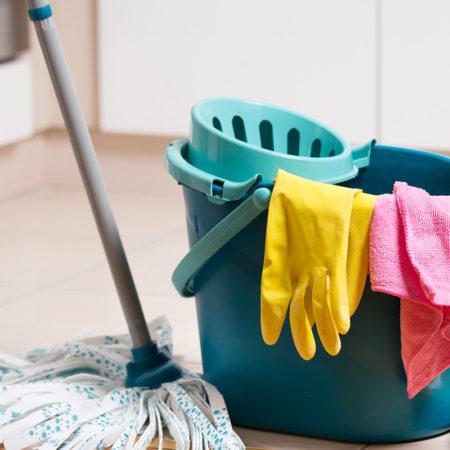 Mantén siempre tu casa limpia, y no tendrás problemas con el control de los mosquitos