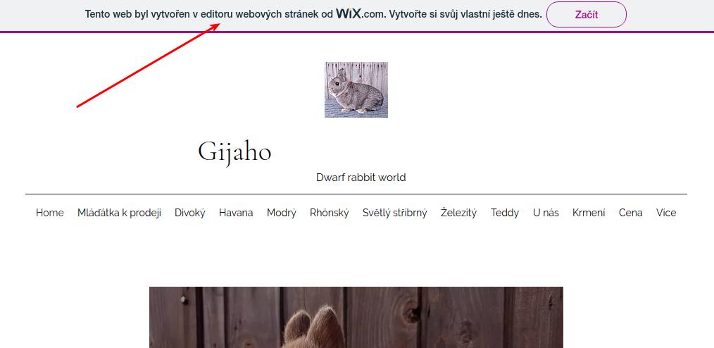 Exemple de publicité sur un site Internet vitrine créé avec Wix